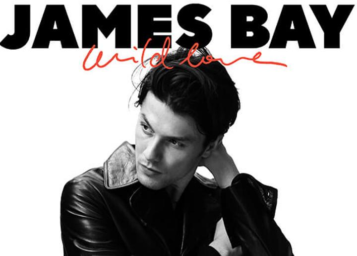 James BAY WILD LOVE WORDPRESS